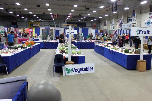 Food, Fruit & Veg