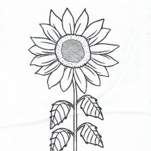 Children's Colouring Contest