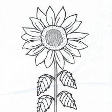 Children's Colouring Contest